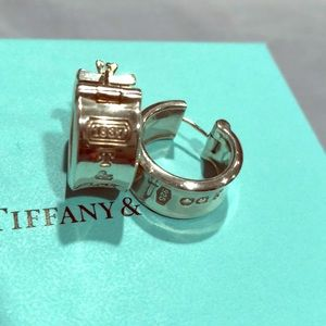 Tiffany & Co. 1837 Collection Earrings!